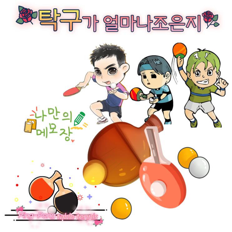 경기도 광주 탁구장 추천 탁구가 얼마나 조은지 탐방기